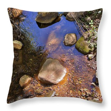 Grass Valley Creek Ca Throw Pillow by K L Kingston