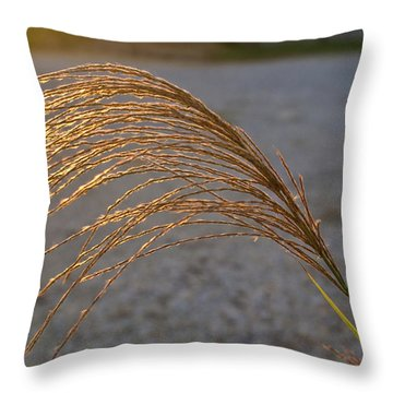 Grassflowers In The Setting Sun Throw Pillow by Douglas Barnett