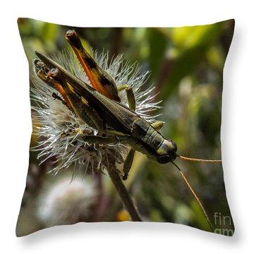 Grasshopper 1 Throw Pillow