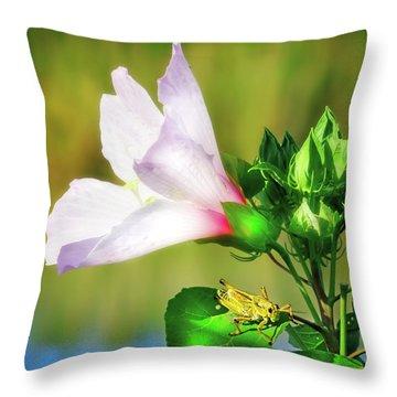 Grasshopper And Flower Throw Pillow