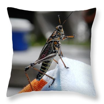 Dancing Grasshopper At The Pool Throw Pillow