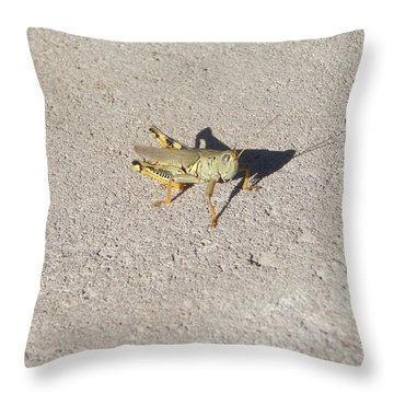 Grasshopper Curiosity Throw Pillow