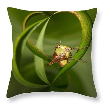 Grasshopper Throw Pillow by Jouko Lehto