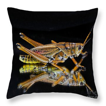 Grasshopper Reflected Throw Pillow