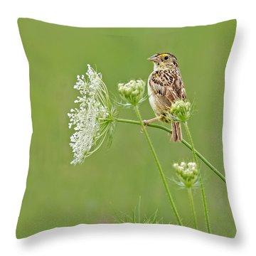 Grasshopper Sparrow Throw Pillow