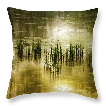 Throw Pillow featuring the photograph Grassland Abstract by Jessica Jenney