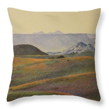 Grasslands Badlands Panel 2 Throw Pillow