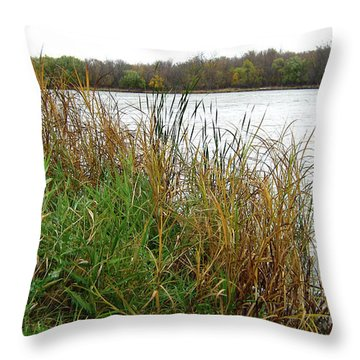 Grassy Bank Throw Pillow