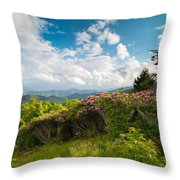 Grassy Ridge Roan Highlands Rhododendrons On The Appalachian Trail Throw Pillow