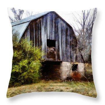 Gray Barn Throw Pillow