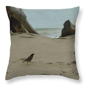 Gray Day On Maui Throw Pillow