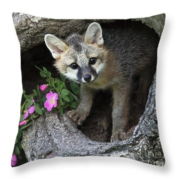 Gray Fox Kit Throw Pillow