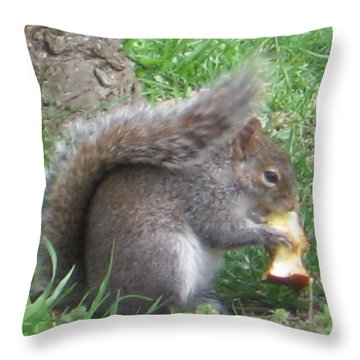 Gray Squirrel With An Apple Core Throw Pillow