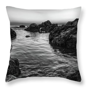 Gray Waters Throw Pillow