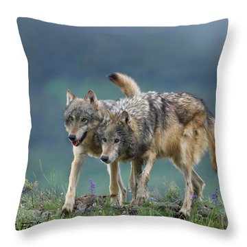 Gray Wolves Throw Pillow by Tim Fitzharris