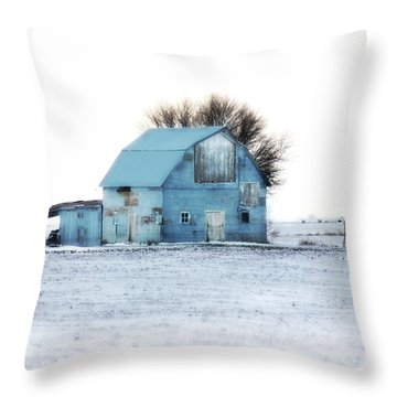 Throw Pillow featuring the photograph Grays by Julie Hamilton