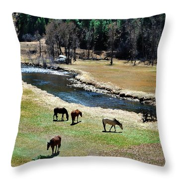 Grazing 2 Throw Pillow by Angelina Vick
