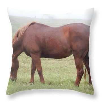 Grazing Again Throw Pillow