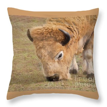 Grazing Buffalo Throw Pillow