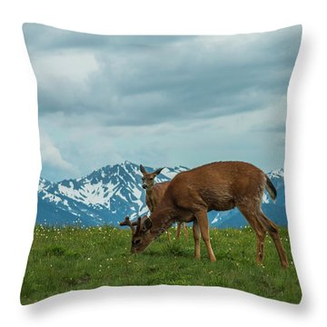 Grazing In The Clouds Throw Pillow