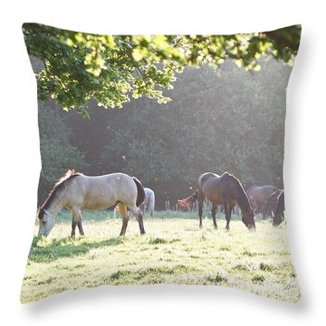 Grazing Throw Pillow by Gary Bridger