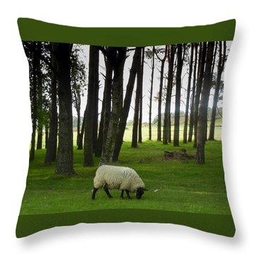 Grazing In The Woods Throw Pillow