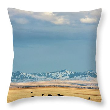 Grazing Near Highwood Throw Pillow
