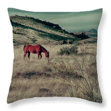 Throw Pillow featuring the photograph Grazing Solo by Charles McKelroy