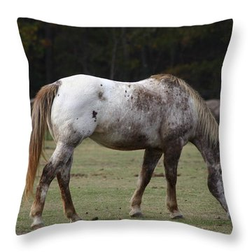 Throw Pillow featuring the photograph Grazing Time by Kim Henderson