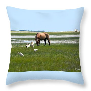 Grazing With The Ibis Throw Pillow