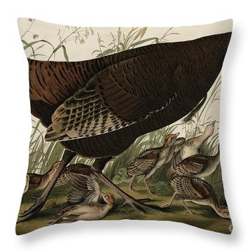 Great American Hen And Young Throw Pillow by John James Audubon