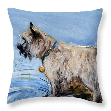 Great Bay Throw Pillow by Molly Poole