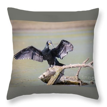 Great Black Cormorant Drying Wings After Fishing Throw Pillow