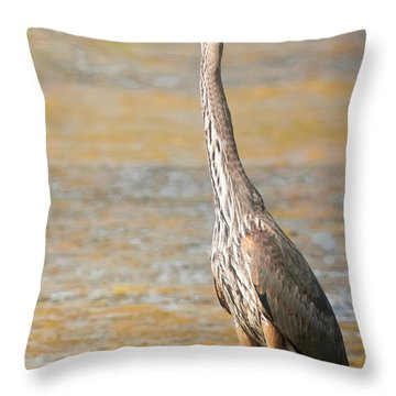Great Blue At The Flats Throw Pillow by Robert Frederick