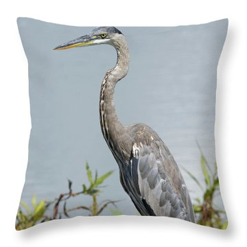 Great Blue Heron #2 Throw Pillow