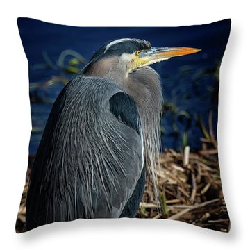 Throw Pillow featuring the photograph Great Blue Heron 2 by Randy Hall