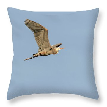Throw Pillow featuring the photograph Great Blue Heron 2015-17 by Thomas Young