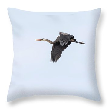 Throw Pillow featuring the photograph Great Blue Heron 2017-1 by Thomas Young