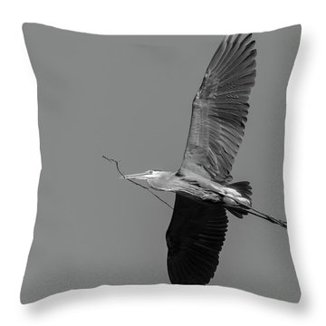 Throw Pillow featuring the photograph Great Blue Heron 2017-2 by Thomas Young