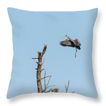 Throw Pillow featuring the photograph Great Blue Heron 2017-3 by Thomas Young