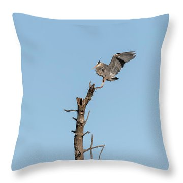 Throw Pillow featuring the photograph Great Blue Heron 2017-4 by Thomas Young