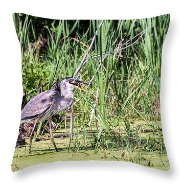 Great Blue Heron And Blue Gill Throw Pillow by Edward Peterson