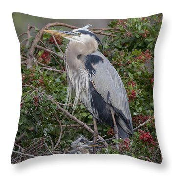 Great Blue Heron And Nestling Throw Pillow