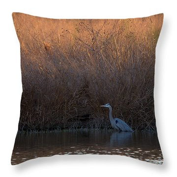 Great Blue Heron And Sunlit Field Throw Pillow