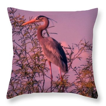 Great Blue Heron - Artistic 6 Throw Pillow