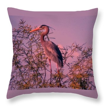 Great Blue Heron - Artistic 6 Throw Pillow
