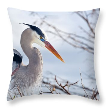 Great Blue Heron At Wakodahatchee Wetlands Throw Pillow
