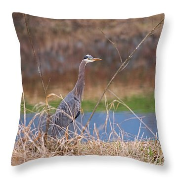 Throw Pillow featuring the photograph Great Blue Heron By The River by Sharon Talson