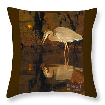 Great Blue Heron Throw Pillow by Debbie Stahre