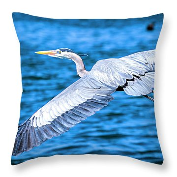 Throw Pillow featuring the photograph Great Blue Heron Flight by David Millenheft